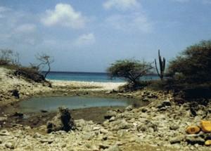1983, playa benge