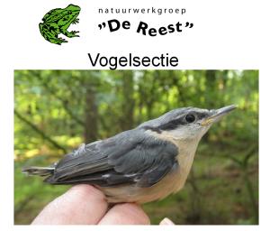 2016 – Vogelsectie